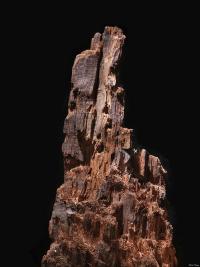 Famous Civil War Tree Stump