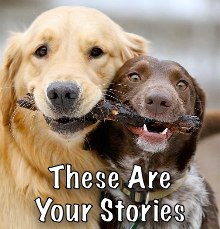 These Are Your Stories!