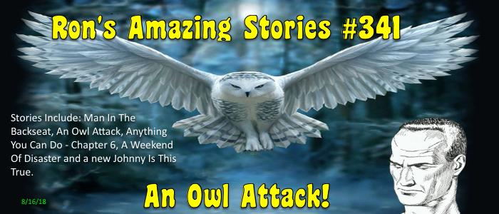 RAS #341 - An Owl Attack!
