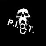 Paranormal Investigations & Observations Team